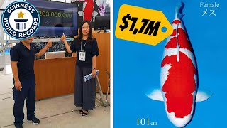 World Record! Most expensive Koi Fish | $1.700.000,- USD