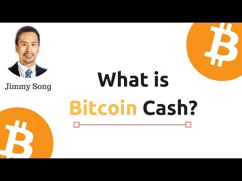 What is Bitcoin Cash?  An Update On Bitcoin