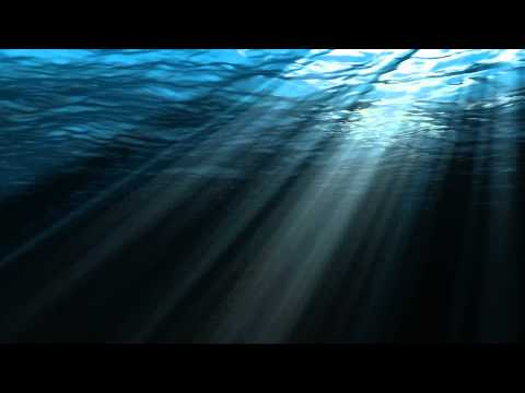 Beautiful Animation Video - Deepwater
