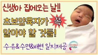 [출산/육아]신생아 집에 오는날 해야할 일/신생아 돌보…