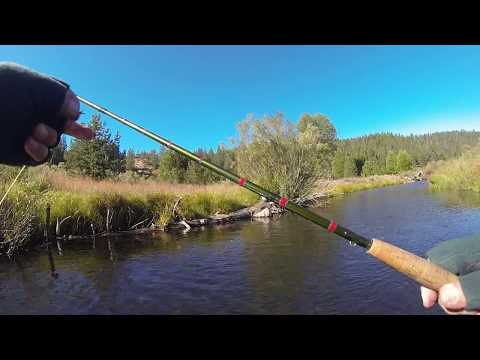 Little Truckee... Dry Fly Action  9 23 17