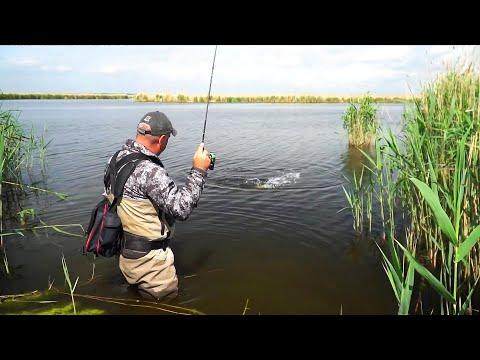 Рыбалка на МикроДжиг! КАК ВЫБРАТЬ? Спиннинг/Катушку/Приманки/Груза/Крючки!