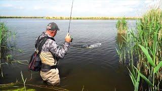 Рыбалка на МикроДжиг КАК ВЫБРАТЬ Спиннинг Катушку Приманки Груза Крючки