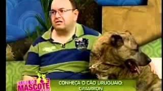 Clube do Mascote Cimarron Uruguaio Parte01