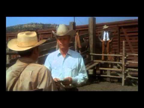 Meu Nome é Jim Kane / Pocket Money (1972)