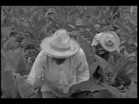 TIERRA   BRAVA  1938