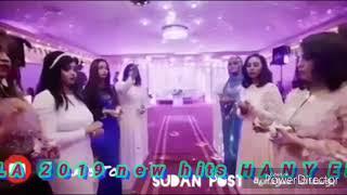 هاني السوداني احلي عريس اليله2019