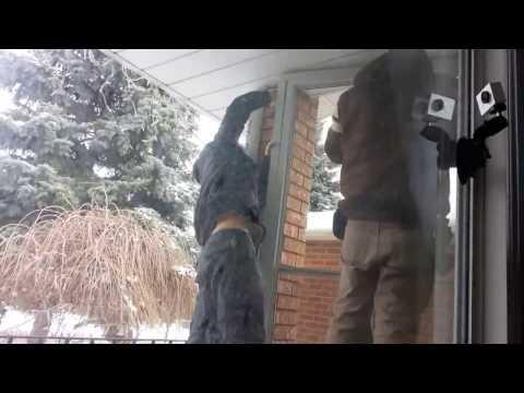 Installing porch glass enclosure time lapse