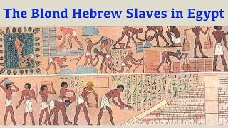 The Blond Hebrew Slaves in Egypt (Black Hebrews Debunked)
