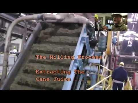 Producing Raw Sugar 2012 - Lula Sugar Mill 11.25.2012 Tour.wmv