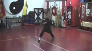 Upper 8 Elbows CCK Tai Chi Praying Mantis 2011 - Las Vegas Kung Fu