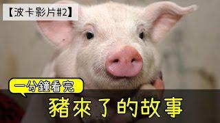 【波卡影片#2】1分鐘「豬來了」的故事