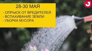 Календарь садовода на месяц  май