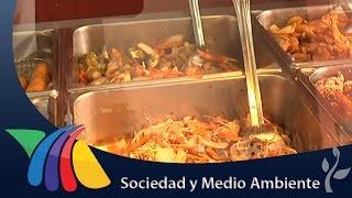 Cocinaban con carne de perro   Noticias de Yucatán