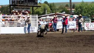 Ryleigh Jacobson- muttin busting 2013