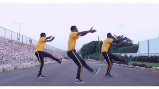 DJ FLEX X DJ DID OFFICIAL AFROBREAK DIP DOP DANCE VIDEO || HEROZ