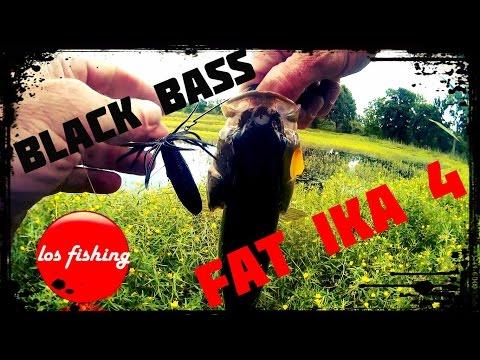 Pêche Du Black Bass + Présentation De Leurres !