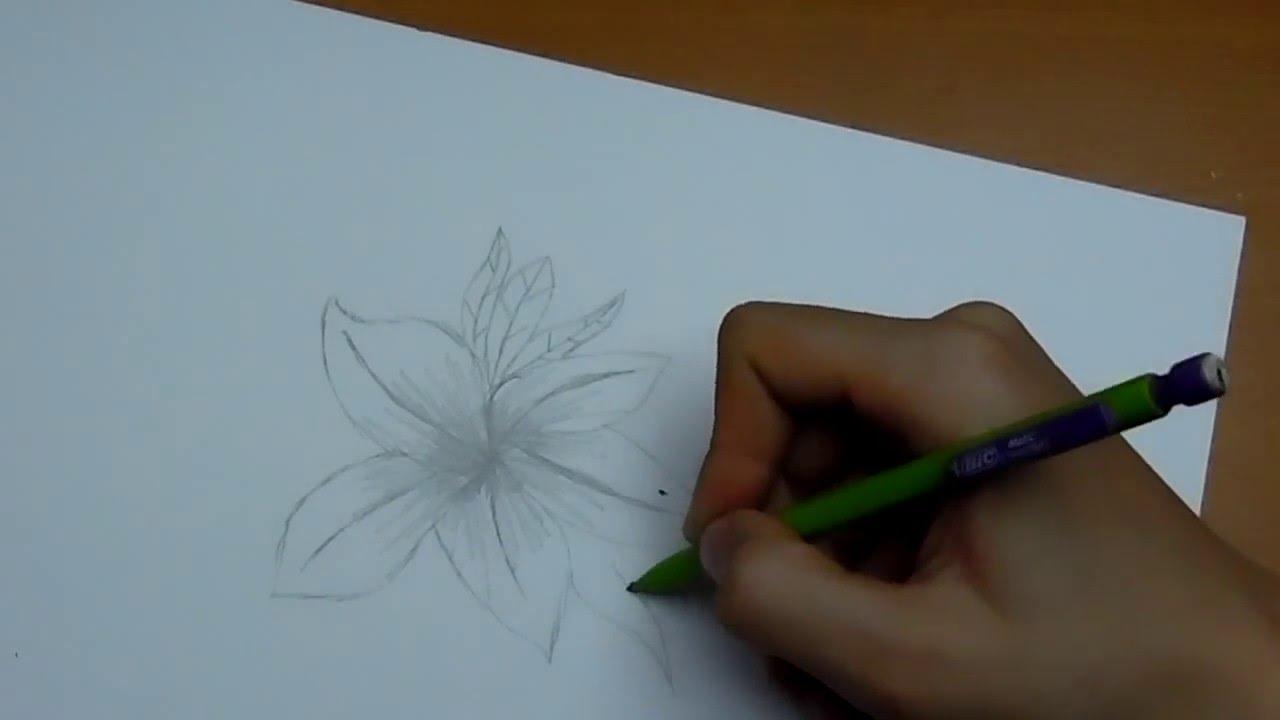 dessiner une fleur facile - YouTube