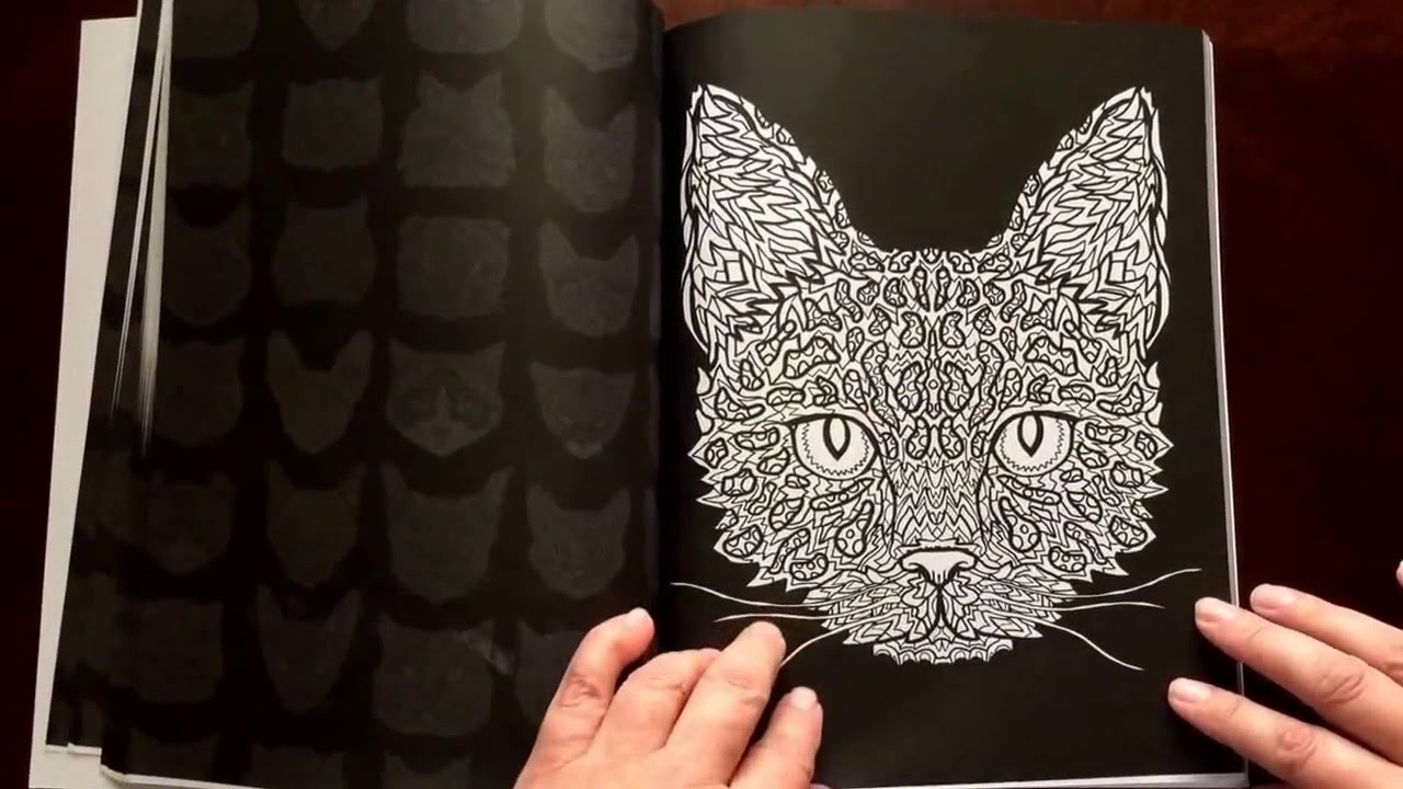 Complicated Cats By Antony Briggs Coloring