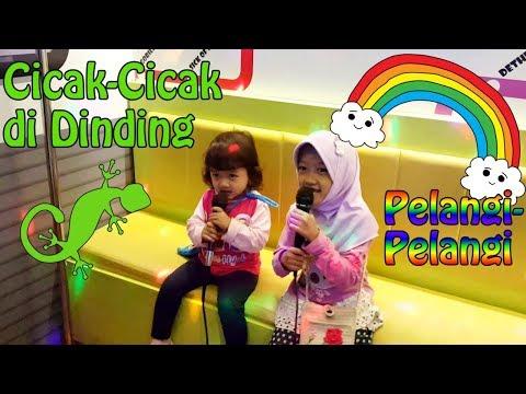 Nyanyi Lagu Anak-Anak   Cicak-Cicak Di Dinding & Pelangi-Pelangi