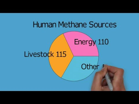 Atmospheric methane, Animated graphs