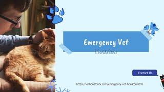 Emergency Vet Houston