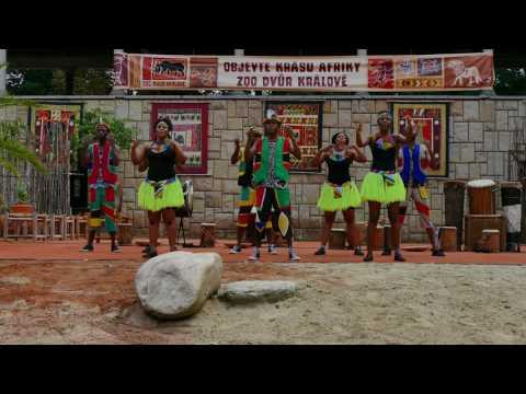 IYASA  Festival Africa Live ZOO Dvůr Králové.