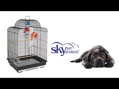 Small Bird Cage - San Luis - Sky Pet Products - YouTube