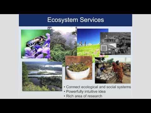 "A Seminar with Taylor Ricketts: ""Putting Ecosystem Services on the Map"""