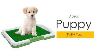 Лоток-туалет Puppy Potty Pad для домашних животных