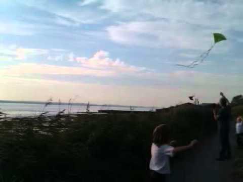 Flying kites at the Mersey Estuary