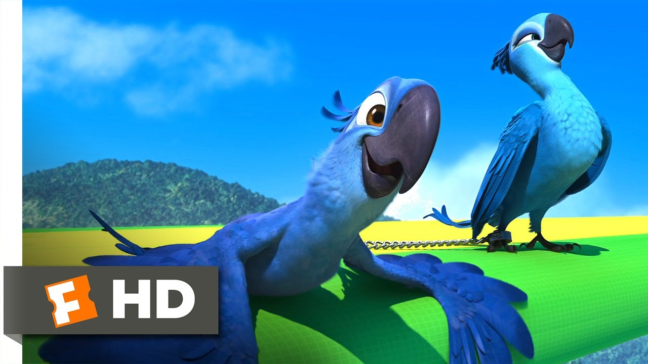 Girl Angry Birds Wallpaper Rio 4 5 Movie Clip Flying Fail 2011 Hd Youtube