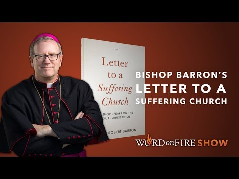 Bishop Barron's New Book on the Sexual Abuse Crisis