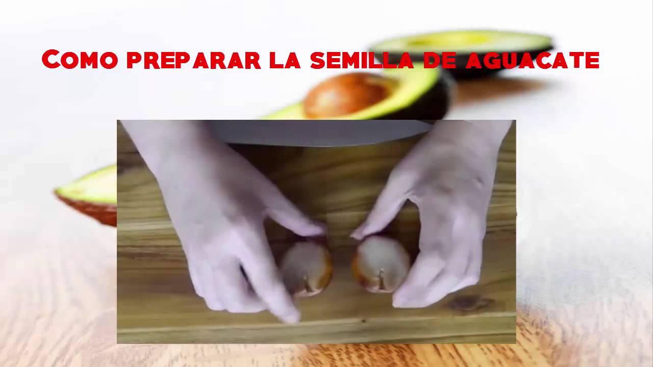 aguacate semilla como preparar