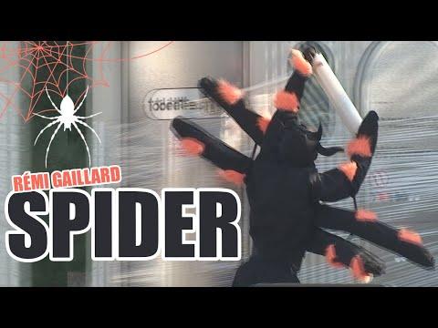 SPIDER PRANK (REMI GAILLARD)