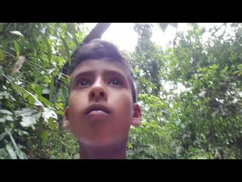ROAD TRIP #1 (Bangladesh)