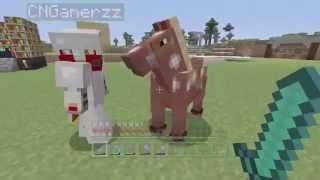 """Minecraft Xbox - Magical Mayhem - """"Rainbow Raiders"""" (24)"""