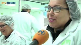 Deze garnalen zijn gewoon out of the box - RTV Noord(Met de hand garnalen pellen gebeurt in ons land al niet meer sinds 1990. Dat is verplaatst naar Marokko, want: goedkoper. Toch opende onlangs in Den Haag ..., 2015-12-04T17:14:43.000Z)