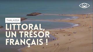 Littoral, un trésor français !  Thalassa (reportage complet)