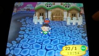 Animal Crossing Wild World - Comment faire un voeu