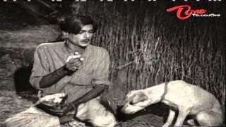 Telugu Comedy Scene - Dog Scares NTR & His Servant