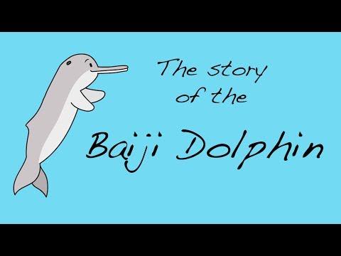 The Story of the Baiji Dolphin