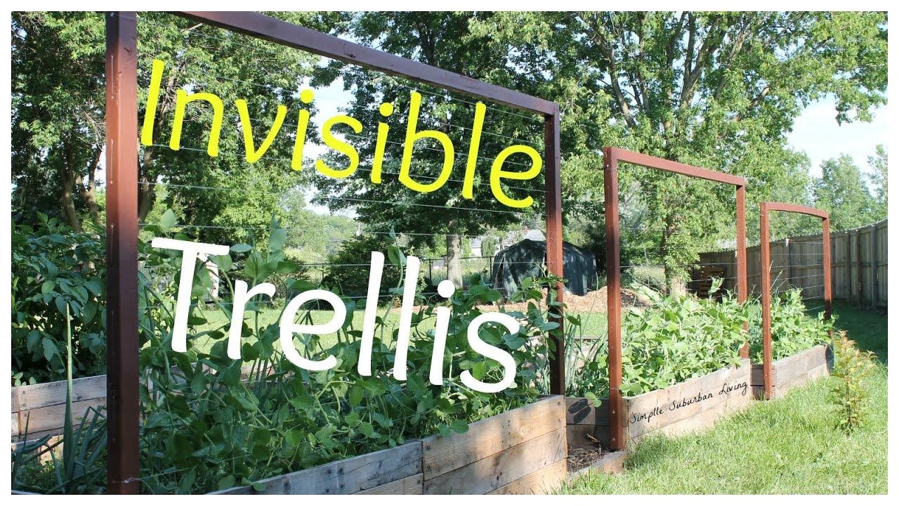 Invisible Trellis - A cheap raised bed trellis system - YouTube