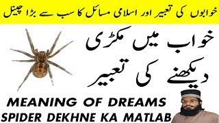 Video khawab ki tabeer in urdu hindi | khawab ki tabeer in urdu islam | khwab mein makri dekhna download MP3, 3GP, MP4, WEBM, AVI, FLV April 2018