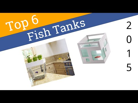 6 Best Fish Tanks 2015