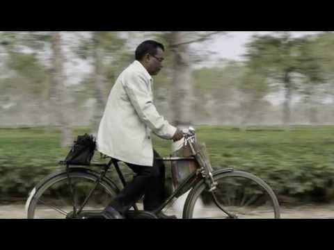 Biking to Tea Plantations