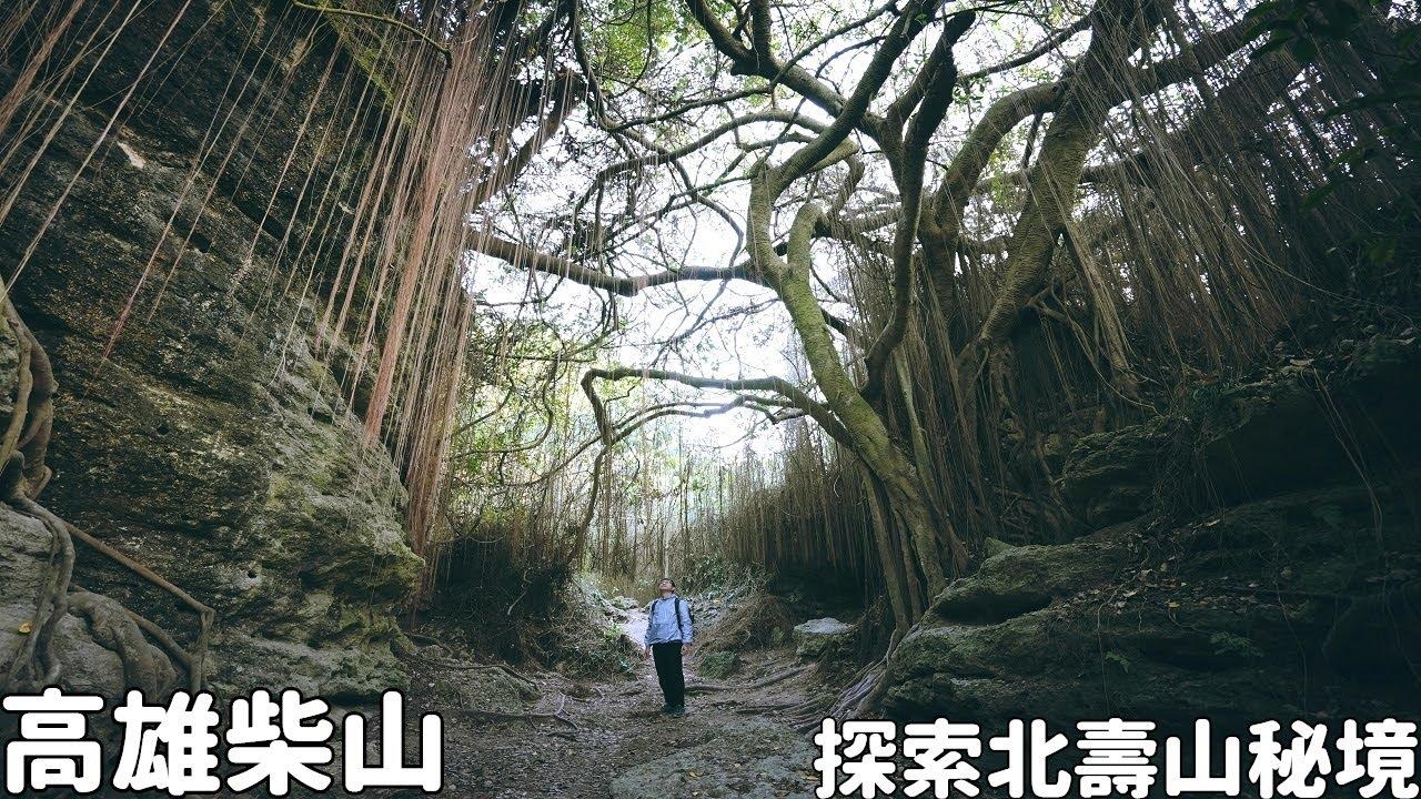 高雄柴山隱藏好多神秘景觀!探索北壽山環狀步道秘境,猴子老樹、礁石岩洞、峽谷斷崖一次滿足
