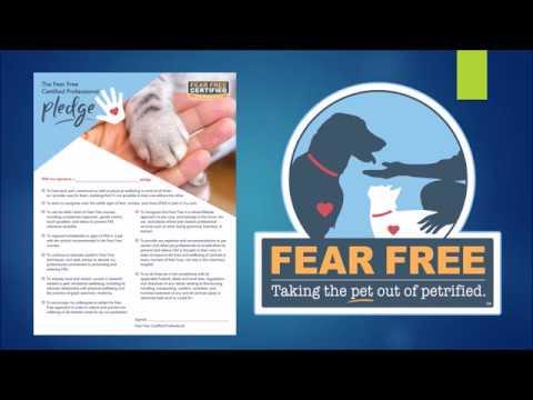 MVC FEAR FREE VET VISITS