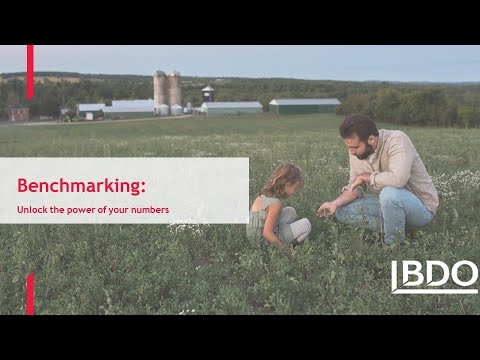 Benchmarking: Unlocking the power of your numbers | BDO Canada