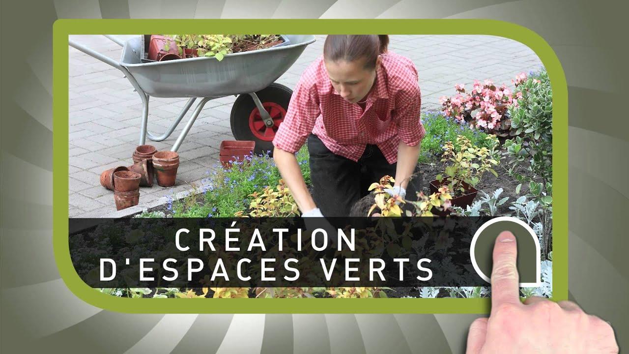 Jardins australs paysagiste sur l 39 ile de la r union for Entretien jardin ile de la reunion
